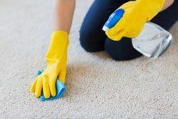 لکه برداری فرش
