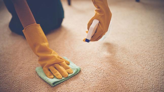 حذف انواع لکه از روی فرش، مبلمان و موکت در منزل