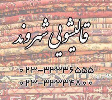 سرویس دهی سراسر تهران