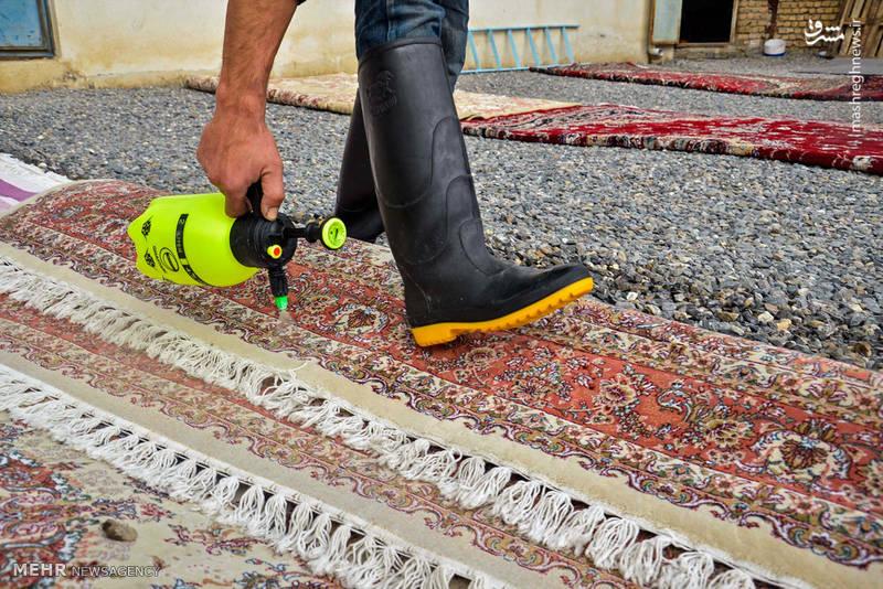 قالیشویی و مبل شویی آرتاویل (الماس) اردبیل