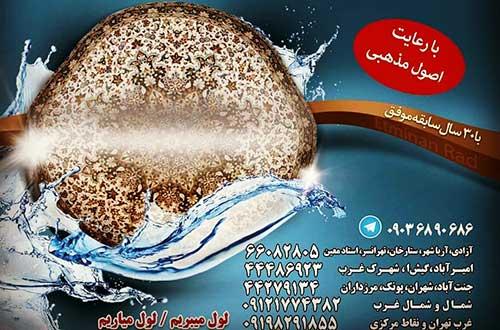 سرویس دهی شرق و مرکز تهران