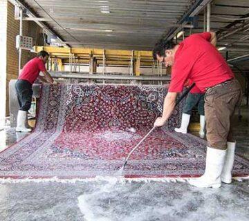 قالیشویی سن سون اردبیل