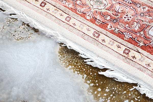 قالیشویی معتبر تهران