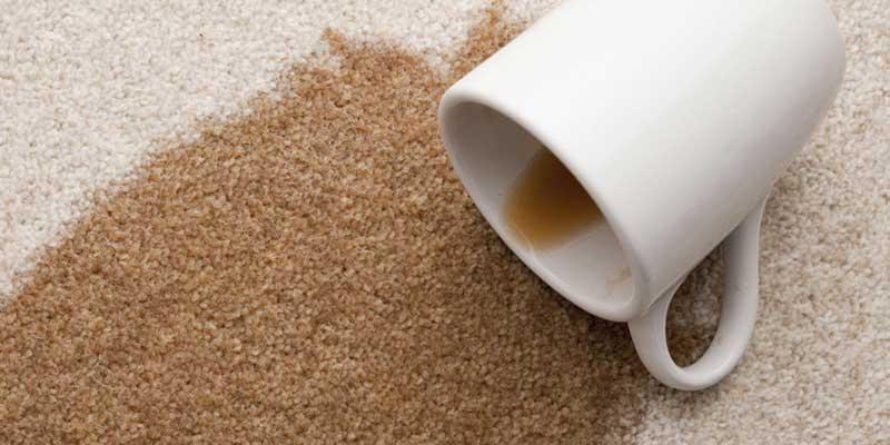 آموزش حذف لکه قهوه خشک شده روی فرش