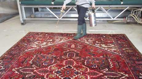 قالیشویی توکل در محله شریعتی
