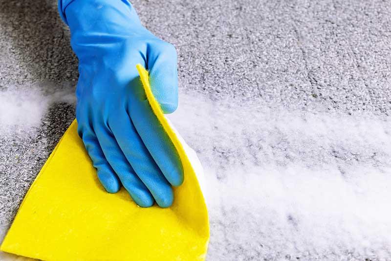 نحوه پاک کردن لکه ادرار از روی فرش
