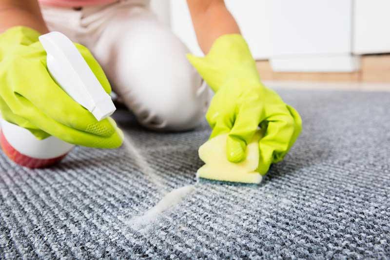 پاک کردن لکه ادرار از روی فرش با اسپری مخصوص
